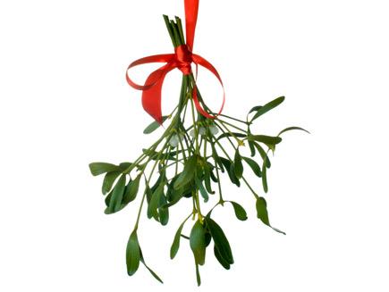 Natural christmas (aké dekorácie si môžeš vyrobiť sama:) ☃ - imelo na pobozkanie