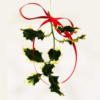 Natural christmas (aké dekorácie si môžeš vyrobiť sama:) ☃ - Obrázok č. 9