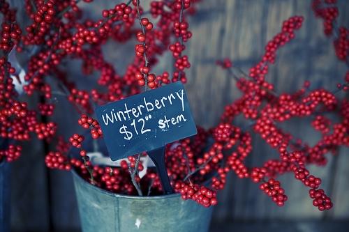 Natural christmas (aké dekorácie si môžeš vyrobiť sama:) ☃ - Obrázok č. 21