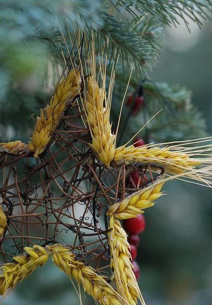 Natural christmas (aké dekorácie si môžeš vyrobiť sama:) ☃ - hviezda so žita