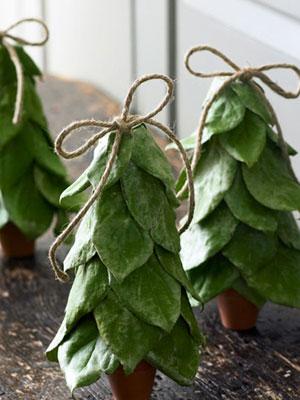 Natural christmas (aké dekorácie si môžeš vyrobiť sama:) ☃ - Listy z citronovníka