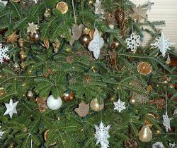 Natural christmas (aké dekorácie si môžeš vyrobiť sama:) ☃ - Obrázok č. 97