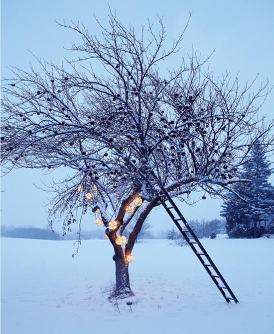 Natural christmas (aké dekorácie si môžeš vyrobiť sama:) ☃ - Obrázok č. 354