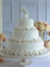 Náš dort,akorat ruřičky budou oranžové