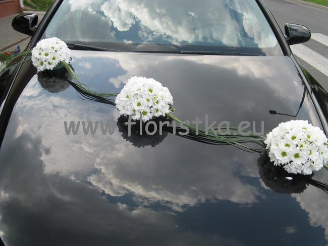 Autocorso něvěsty i ženicha - Obrázok č. 87