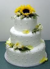 hmm...tak tato ma tiez dostala...asi vytvorim z dvoch peknych tort jednu vysnivanu :)