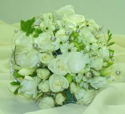 Zeleno-bílá (Green and white)
