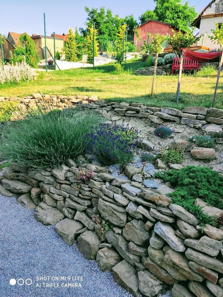 2021 záhrada u nás - Obrázok č. 3