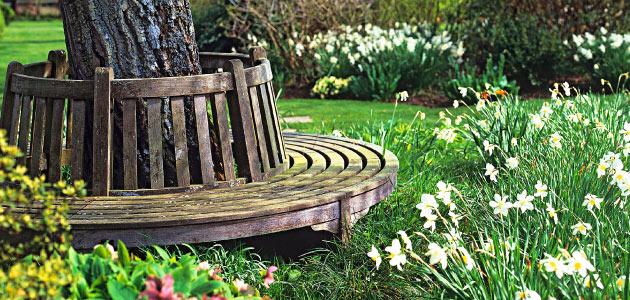 Kouzelná zahrada - Obrázek č. 86