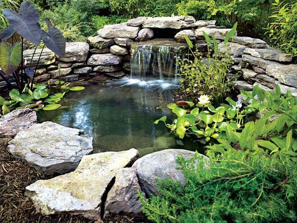 Voda v záhrade - Obrázok č. 167