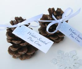 Winter wedding pine cones