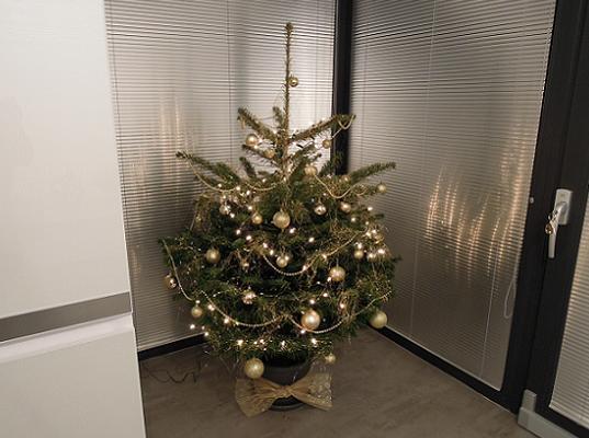 nas prvy manzelsky stromcek :) a este aj v novom domceku a s miminkom v brusku ♥ - Obrázok č. 1