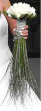 ...moja krásna tulipánová kytička :o)