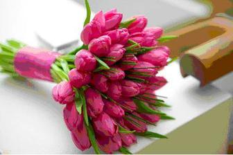 miluji tuliány, tato vyhrála,ale nakonec nebudou,vdávám se v létě a to nejsou tulapánky:-(((