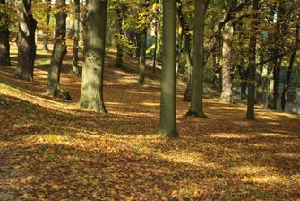 park u hradu, škoda že v červnu tam nebude tohleto krásné listí :)