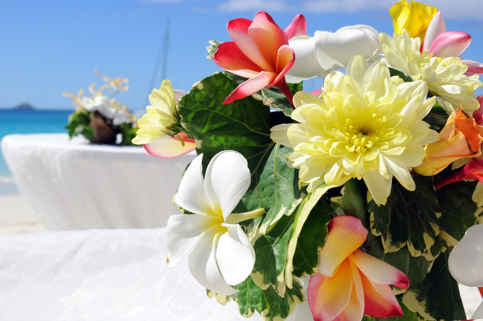 Lea{{_AND_}}Tomi - exotické kvety Frangipani (Plumeria)