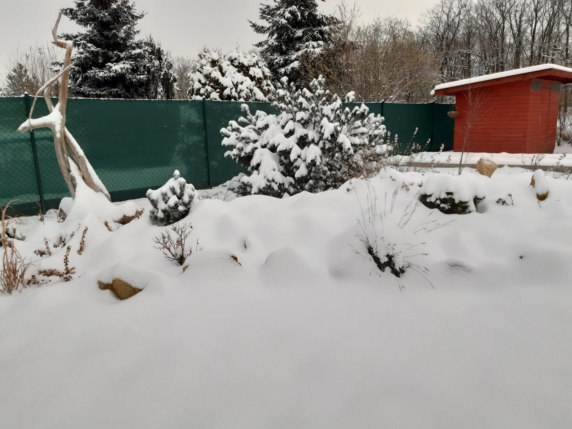Zahrada 2021 - neskutečný, u nás v Polabí nasněžilo