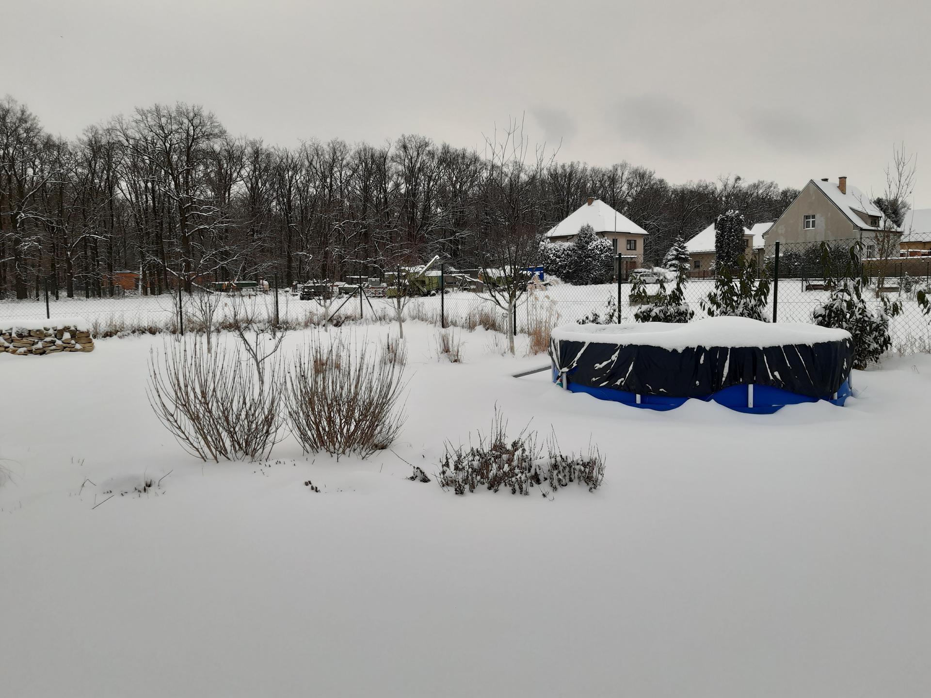Zahrada 2021 - Obrázek č. 2