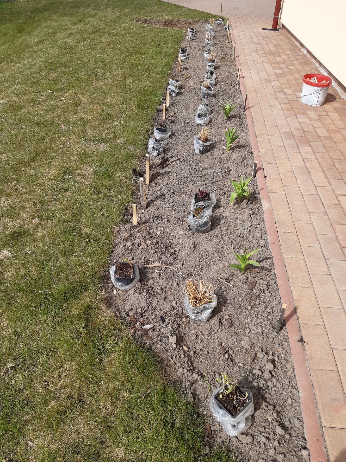 Zahrada 2021 - Byla to fuška...