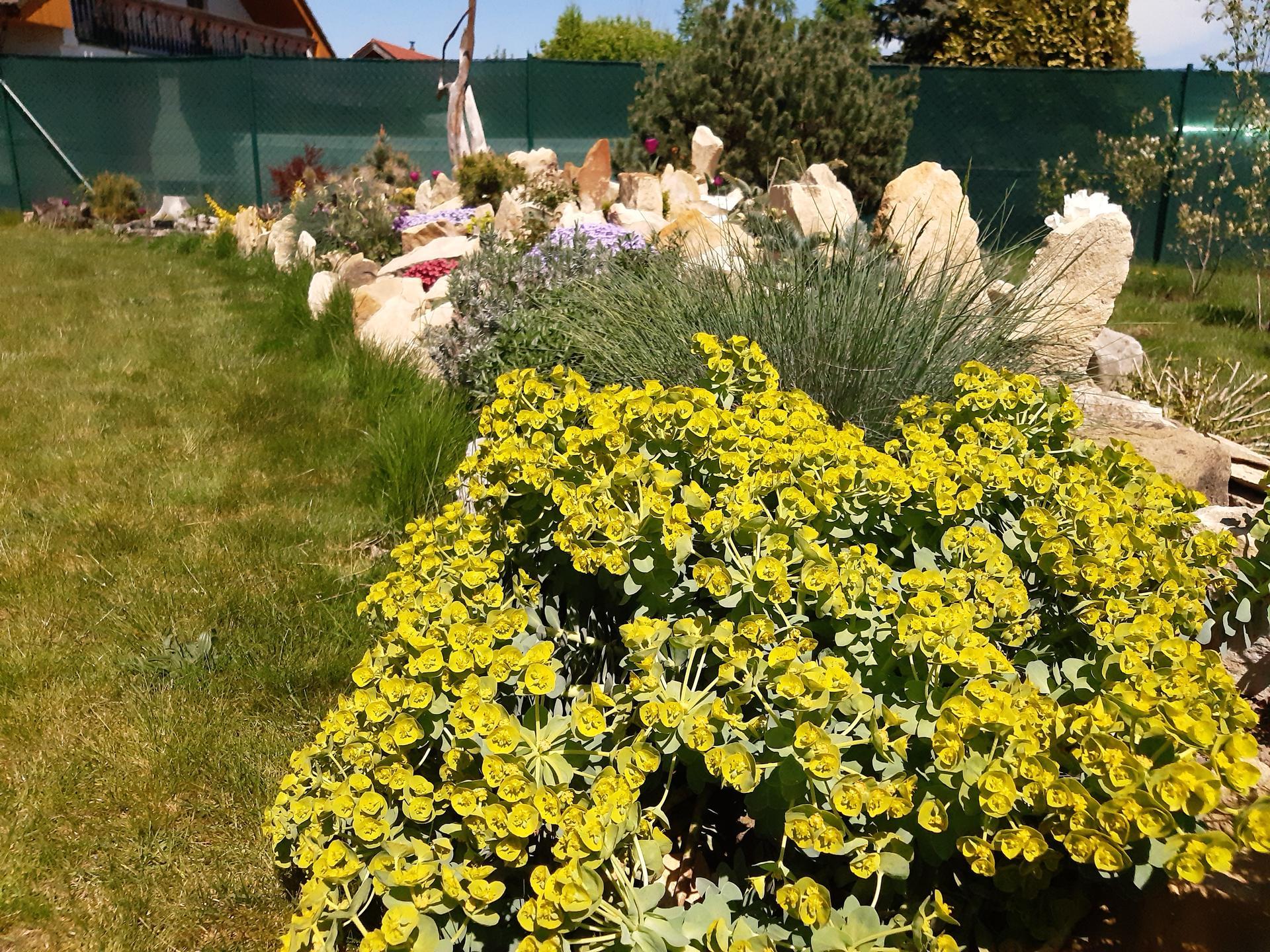 Zahrada 2021 - Skalka se vybarvuje a rozšiřuje