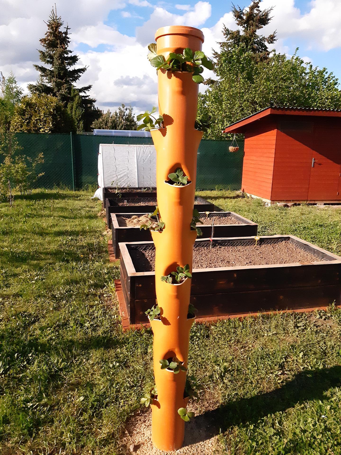 Zahrada 2021 - upgrade užitkové zahrady ;-)