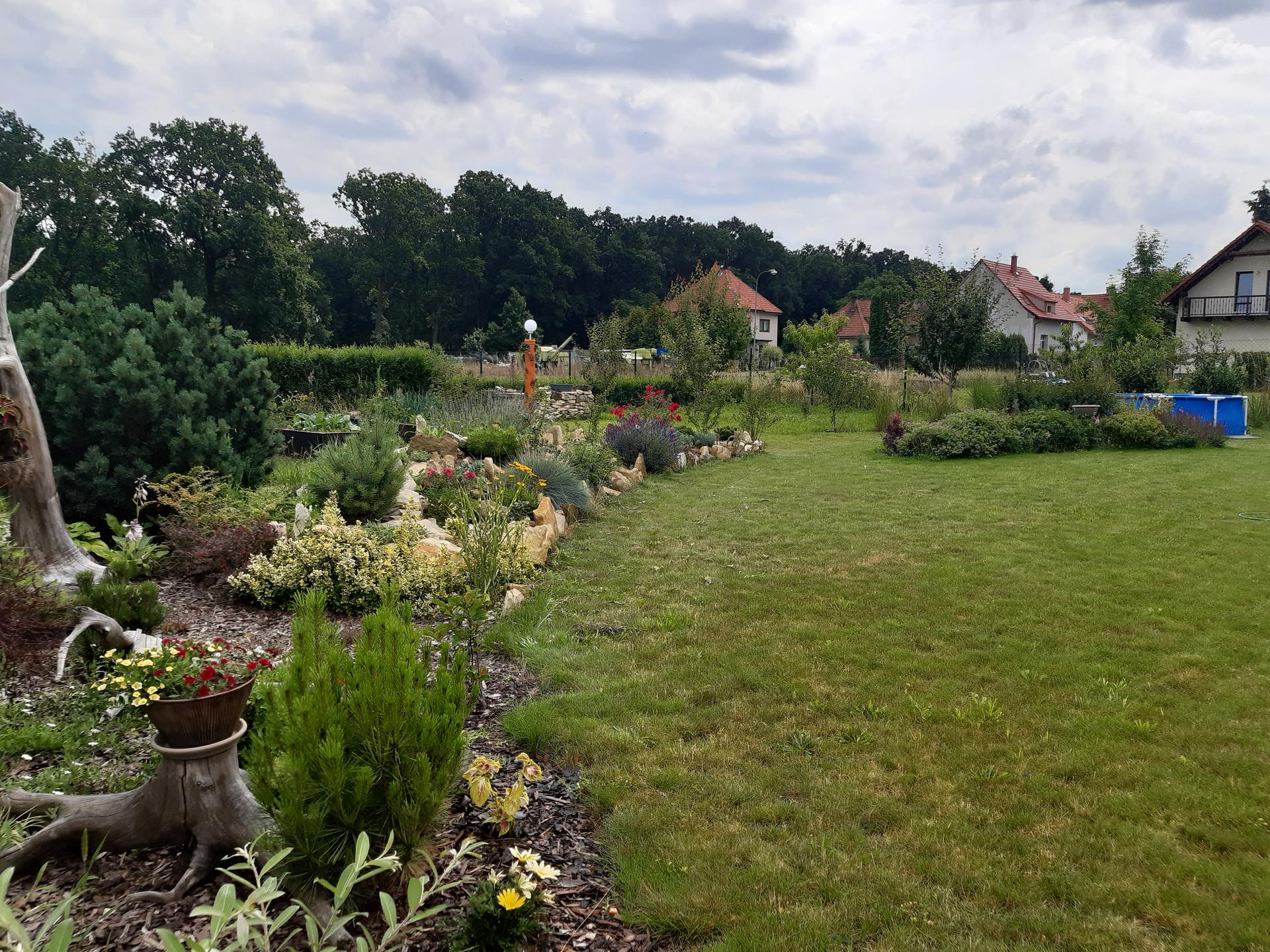 Zahrada 2021 - Obrázek č. 53