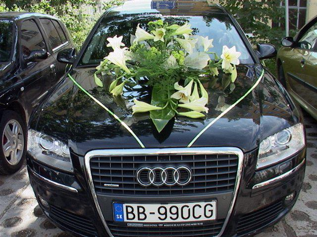 Janka{{_AND_}}Janko - auto nevesty