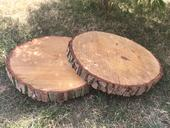 Dekorační pláty dřeva/ kulatiny velké,