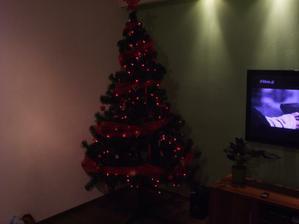Prve vianoce v novom dome