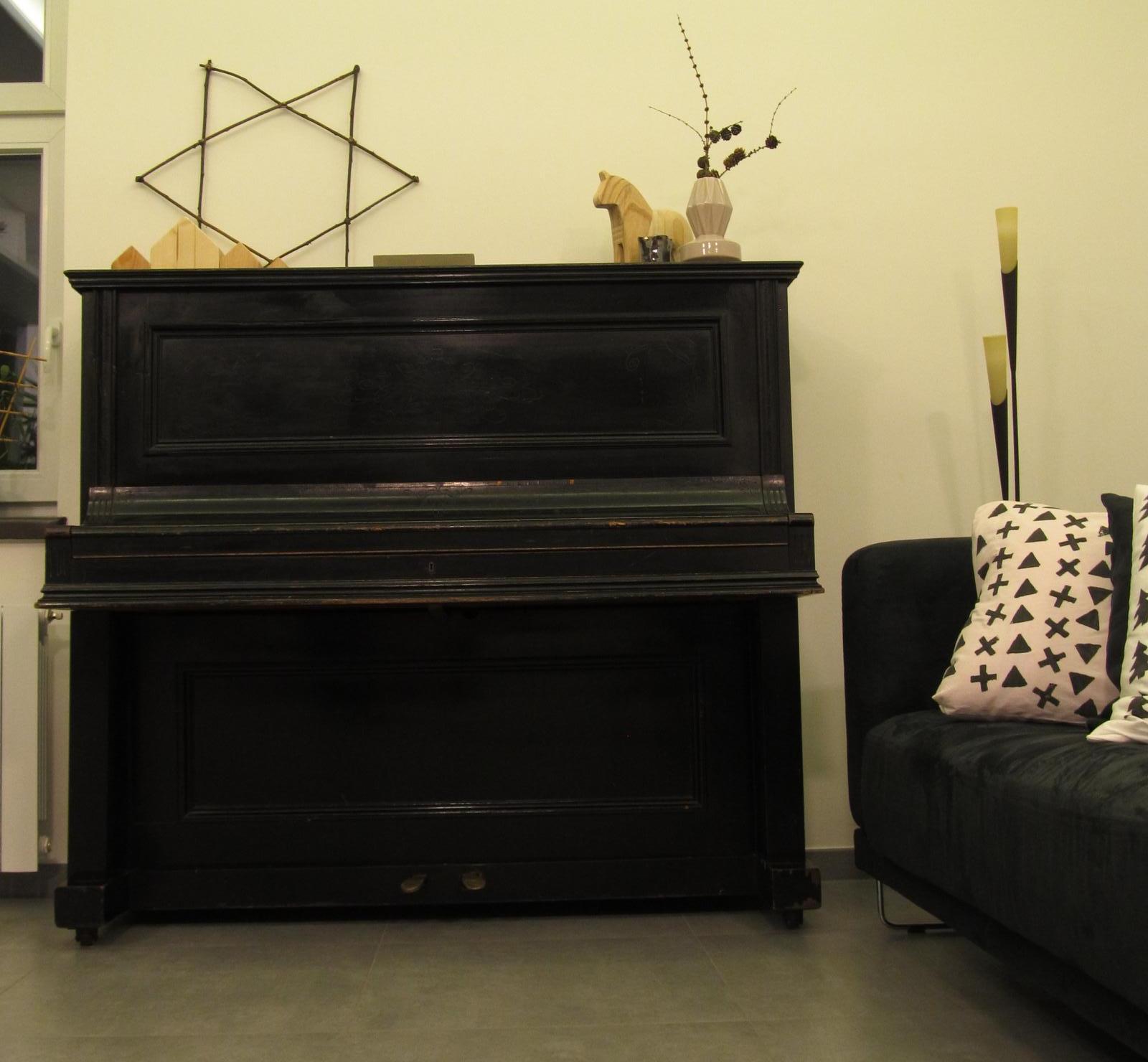 Naše bydlení - Konečně je doma :-)