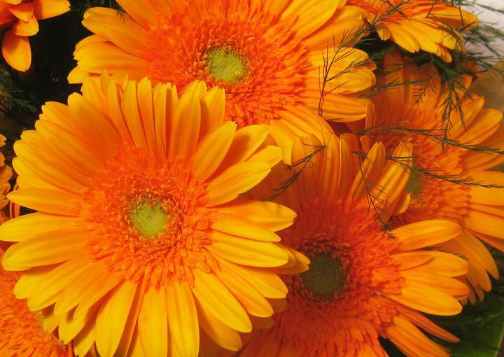 Svadobne kytice - Obrázok č. 55