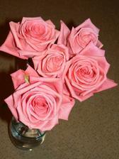 moje valentinske kvietky, taketo krasne su od Valentina