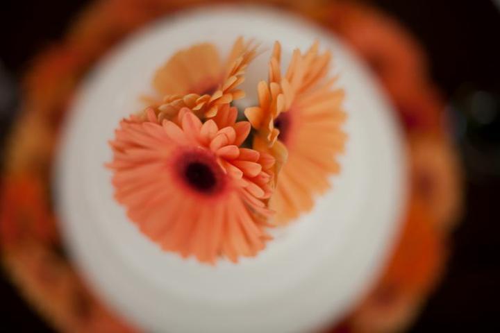 Svadobne kytice - Obrázok č. 65