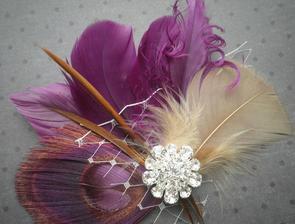 alebo taketo nieco http://www.etsy.com/listing/68225724/plum-love-purple-feather-hair-facinator