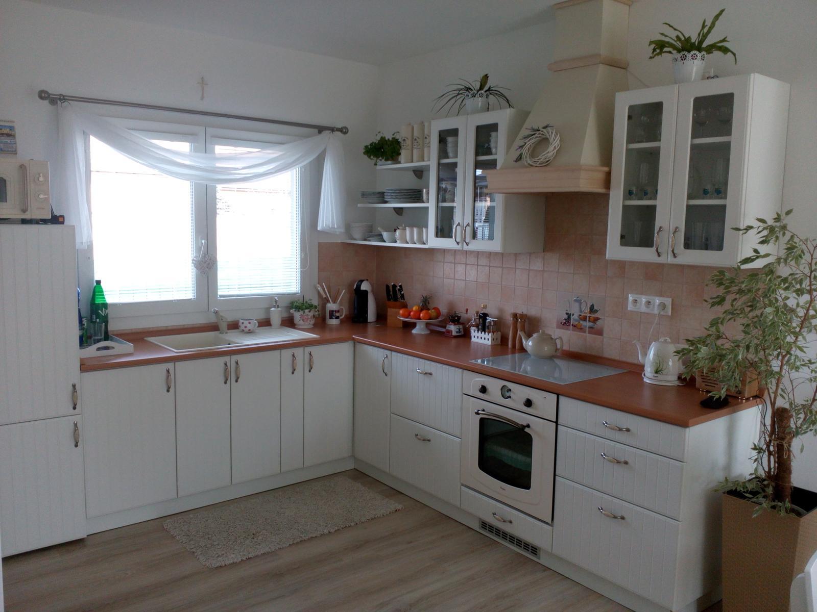 Dom v Dolnej Strede - kuchyňa
