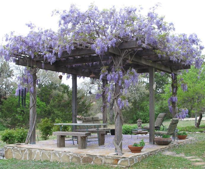 Kouzelná zahrada - Obrázek č. 75