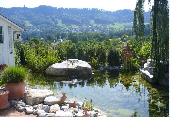 Voda v záhrade - Obrázok č. 203