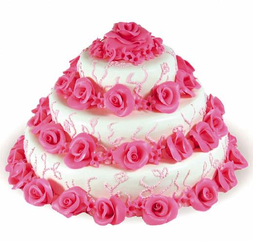 Mirka a Palino - takuto tortu budeme mat