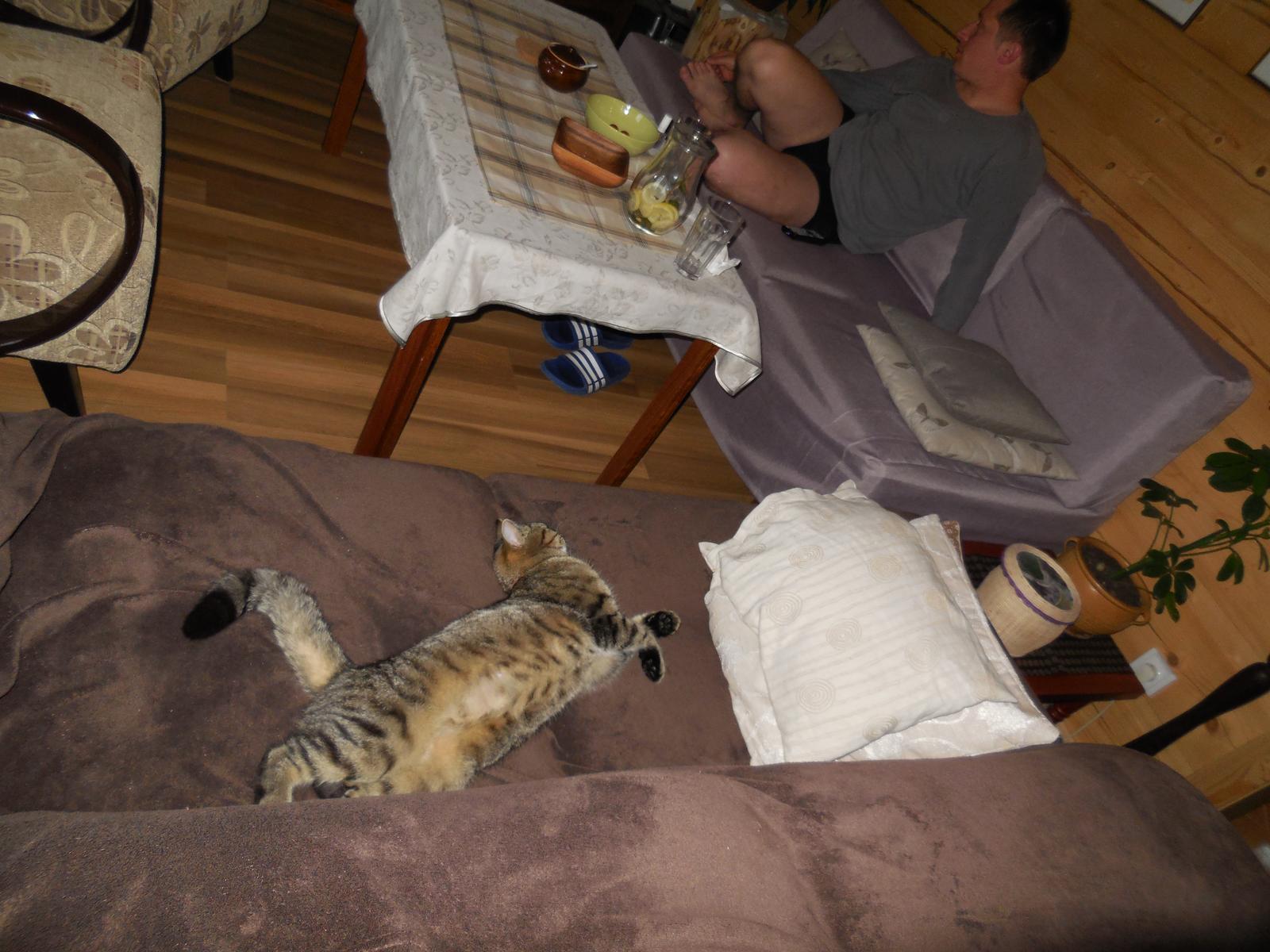 Naše roubenka - ...přesunuli jsme gauč, aby si návštěva měla kam sednout... někdo byl rychlejší :-)