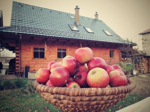 Náš domeček s jablíčky..