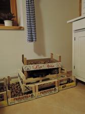 sušíme ořechy... nebo kočku?? :-)