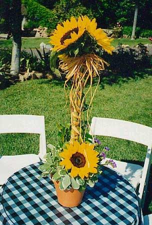 Kvety - Obrázok č. 12