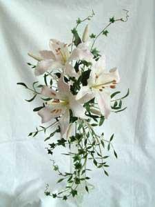 Kvety - Obrázok č. 36