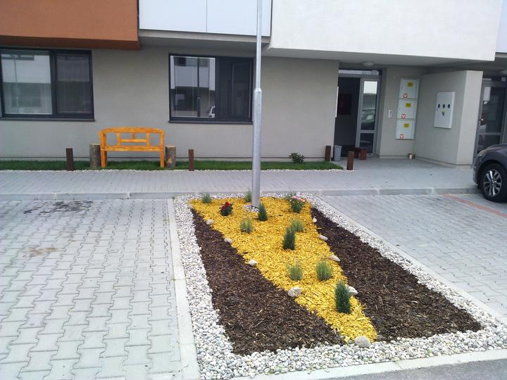 """""""Hviezdne"""" byvanie vo Hviezdoslavove - levandule, konifery a ruze, do tvaru sipky, aby pripadne nesikovne auta sli po """"hluchom"""" mieste parkovat a nie po rastlinke ..."""