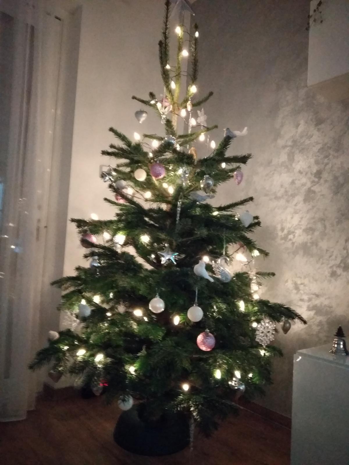 Veselé Vánoce 🎄 - Obrázek č. 1