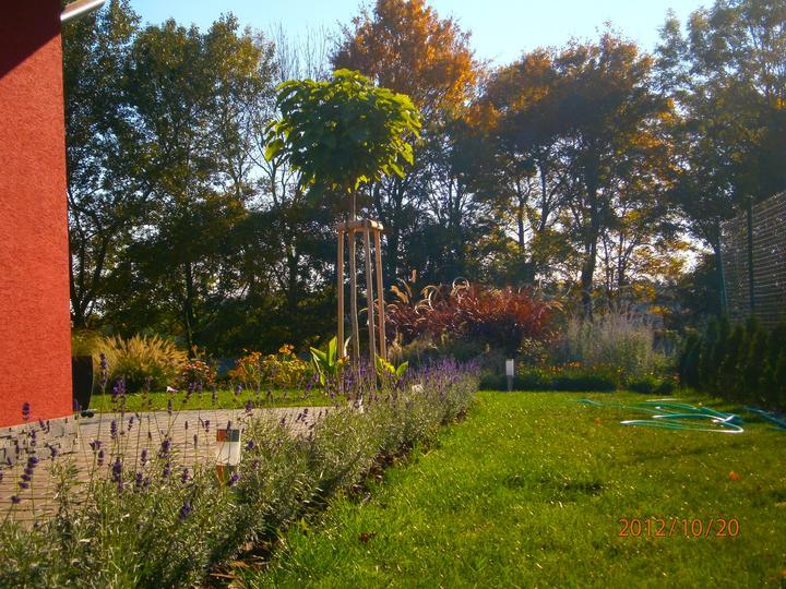 Moderná záhrada - Obrázok č. 2