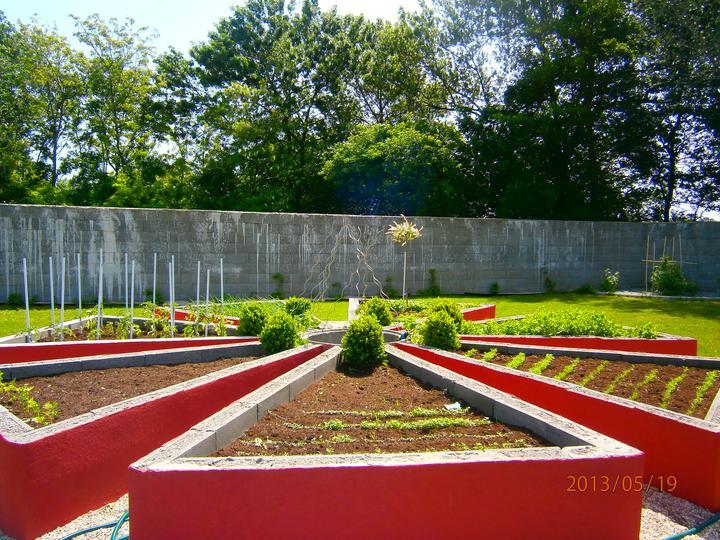 Moderná záhrada - Obrázok č. 13