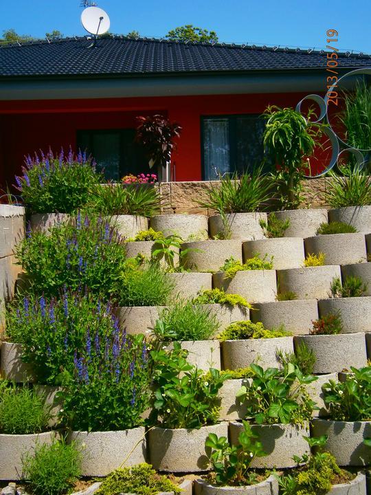 Moderná záhrada - Obrázok č. 14