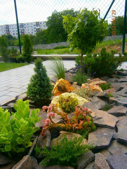 Moderná záhrada - Obrázok č. 9