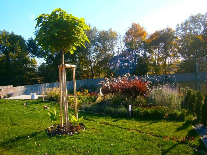 Moderná záhrada - Obrázok č. 8